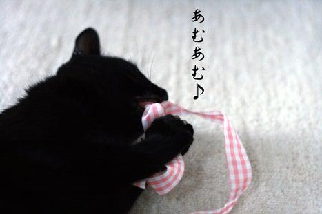 影の日記**黒猫将軍記**