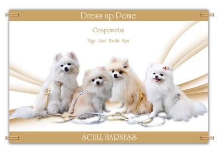 ☆Dress up Pome☆-090903-a4