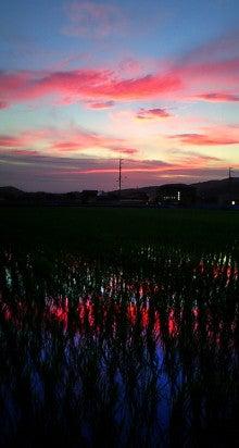 オカヤマのフィールドノート-あの日の夕焼け