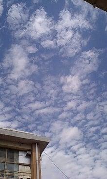 雲と空と日記と-090909_1146~0001.jpg