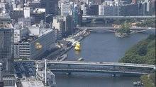 $有利子負債は持たない株のブログ-水都大阪2009アヒル2