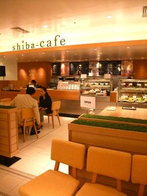 $zakka cafe *joujou* -shiba