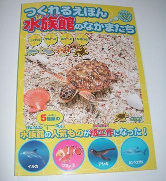 亀の子これくしょん-ウミガメ工作  種本