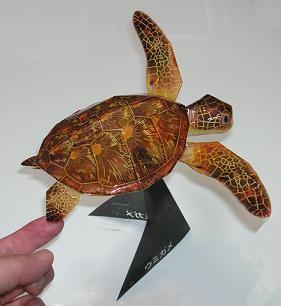 亀の子これくしょん-ウミガメ工作