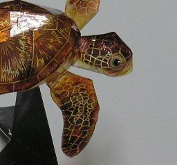 亀の子これくしょん-ウミガメ工作  顔