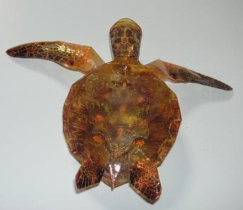 亀の子これくしょん-ウミガメ工作  裏から