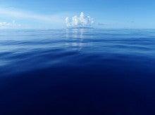 小笠原父島エコツアー情報    エコツーリズムの島        小笠原の旅情報と父島の自然-海原