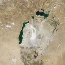 ユデガエル-アラル海(2009年8月)