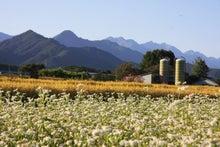 SATOSHI@長野の立ち寄り先-松川町_2009-09-20_4