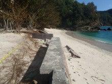 小笠原父島エコツアー情報    エコツーリズムの島        小笠原の旅情報と父島の自然-コペペ