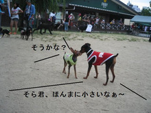 ☆KAHUNA君とLONO君のハチャメチャLIFE☆