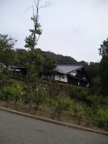 TOKYO Disney RESORT LIFE-DVC00006.jpg