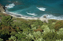 小笠原父島エコツアー情報    エコツーリズムの島        小笠原の旅情報と父島の自然-石浦