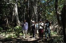 小笠原父島エコツアー情報    エコツーリズムの島        小笠原の旅情報と父島の自然-9.26