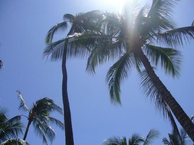 ☆ HAWAII LOVE ゆぅちゃん日記 ☆
