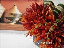 $kazaruで彩るartな暮らし  スタッフブログ