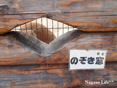 Nagano Life**-のぞき窓