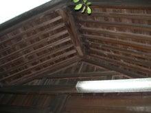 microcosmos B-鶴ヶ岡八幡神社(5)