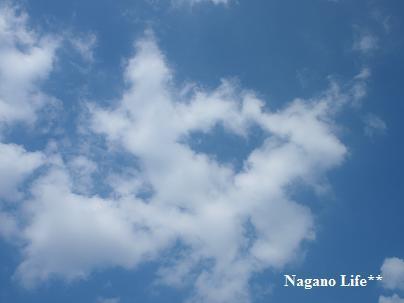 Nagano Life**-動物雲