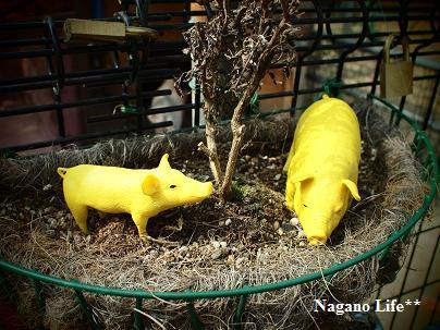 Nagano Life**-黄豚