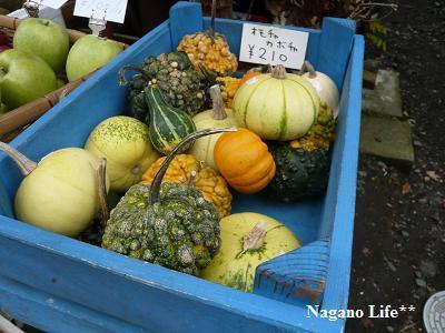 Nagano Life**-おもちゃかぼちゃ