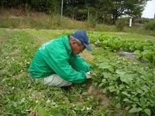 福島県在住ライターが綴る あんなこと こんなこと-農学校0927-3