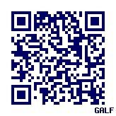 $galf style   -ガルフ スタイル-
