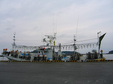 徒然アルバム-客船・漁船を撮る