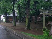 microcosmos B-鶴ヶ岡八幡神社13