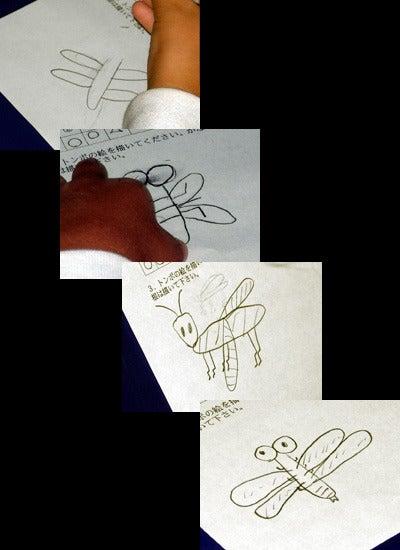 オカヤマのフィールドノート-トンボの絵