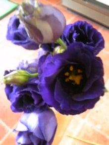 咲結salyu(サリュウ)~お花から始まる笑顔の時間~ フラワーアレンジメントスクール IN 島田市-091010_113010.jpg