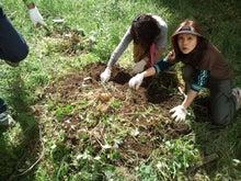 緑化推進事業の活動報告-1011イモ掘り中