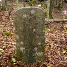 樹海のマル金4石碑