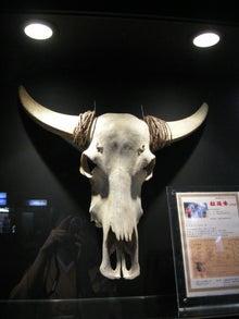 $nodoka ~ きもの はじめ-牛の頭部骨