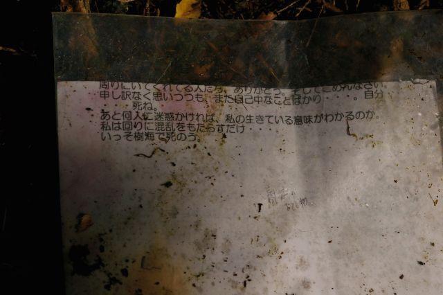 「そうだ樹海、行こう」 ┏( ^o^)┛ 三 樹海