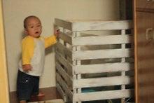 ぷくぷく☆たぁくんの成長日記 誕生~1歳まで-猫トイレゲート3