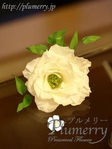 Plumerry(プルメリー)プリザーブドフラワースクール (千葉・浦安校)-髪飾り ウエディング プリザーブドフラワー