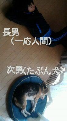 わんこと、まったりな日々~シーズン2~ -20091018100000.jpg