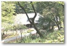 * 横浜4わんず物語 *-2009/10/12/010