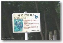 * 横浜4わんず物語 *-2009/10/12/011