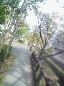ワタナベカズヒロ オフィシャルブログ「ワタナベカズヒロの振れ幅」Powered by Ameba-この道の先はどこへ向かうかは、、自分次第