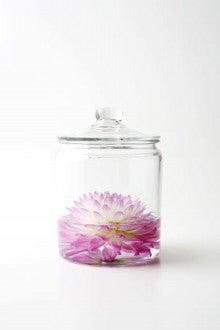 $~★・キラキラ美人サロン・★~-ガラス瓶の花