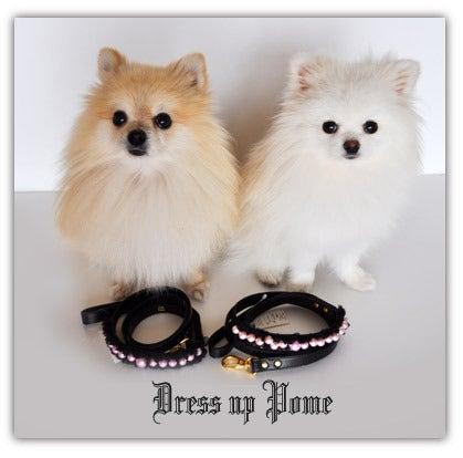 ☆Dress up Pome☆-091023-8h