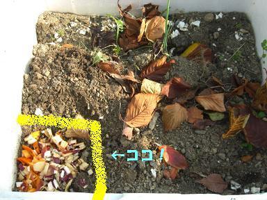 【環境みらい下関】のブログ。