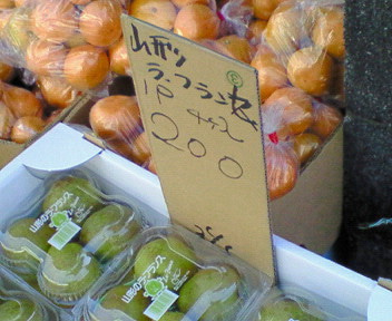 女医風呂 JOYBLOG-200910281115000.jpg