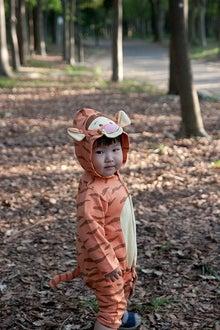 Grumpy Monkey(不機嫌なおさるさん)の観察日記-mini2