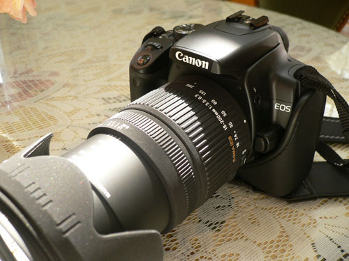 Camerap1050752