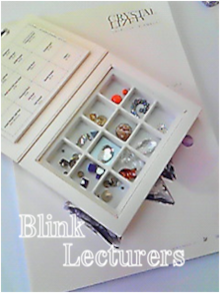 日本ブリンク・アーチスト協会 Blink lecturersのブログ