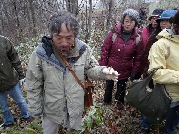$リノベーションで心豊かな北海道の暮らしを実現したい!-種集め