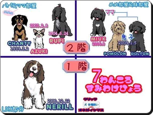 ★ パピプー家族と他4犬種 =7わんころ達 ★